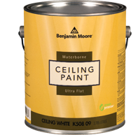 ceiling paint langley